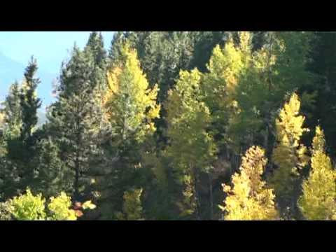 """Les Feuilles Mortes"" (Tribute to Robert Goulet )_Bainto FB Video Files"