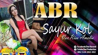 Goyang HOT Risa Amelia ~ Sayur Kol ~ ABR ~ ALDES Audio  Live SEMUT T.J  Drono