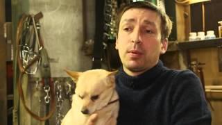 """Уютный дом. Передача 4. Приют для собак """"Верность""""."""
