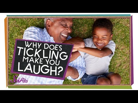 Why Does Tickling Make Me Laugh?