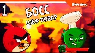 ЗЛЫЕ ПТИЧКИ 2 ИГРА 🌟 Angry Birds 2 (Злые Птицы 2) Прохождение