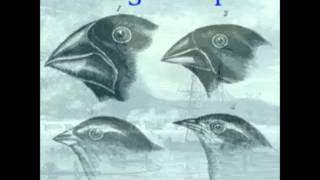 01 On The Origin Of Species By Means Of Natural Selection By Charles Darwin (audiobook)