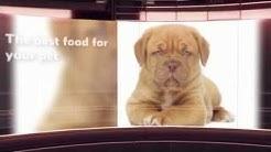 SATISFACTION  Pet Food
