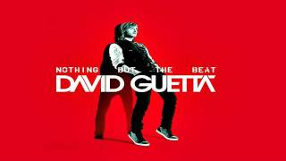 NEW AKON DAVID GUETTA 2012 Crank It Up David Guetta feat Akon Nothing But the beat.mp4