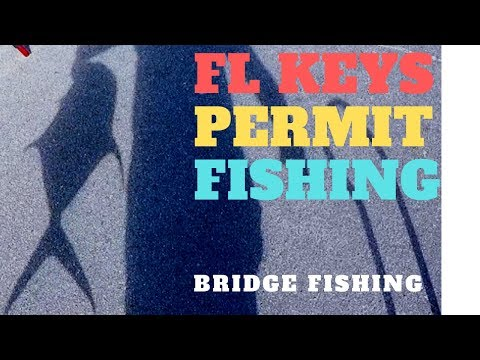 PERMIT FISHING, Fl Keys Long Key Bridge !