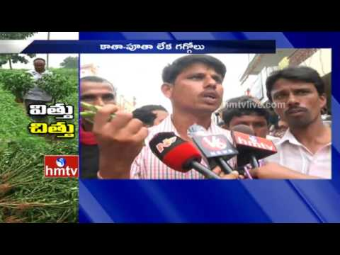 Mirchi Farmers Attack On Fake Seeds Distribution Centers | Khammam Dist | HMTV
