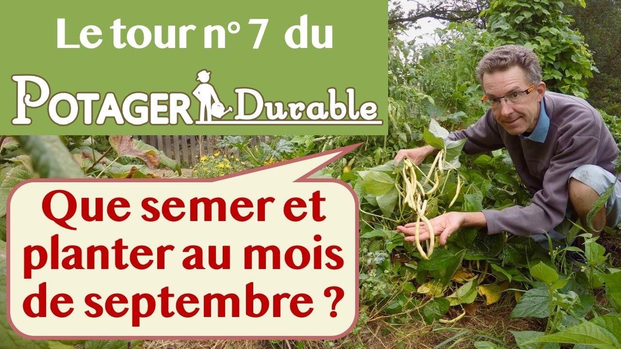 Quoi Planter En Octobre que semer et planter au mois de septembre au potager ?