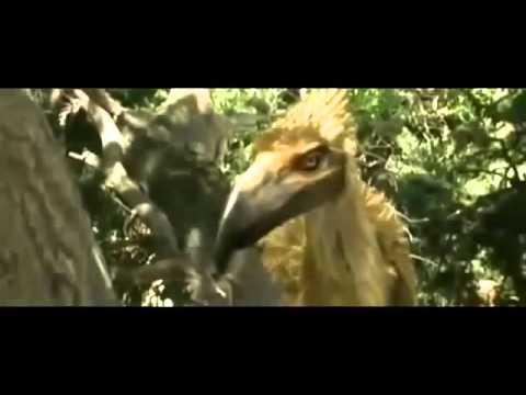 Superdepredadores: El ave del terror documental completo
