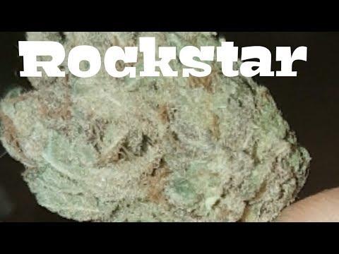 Canadian Cannabis Strain Review - RockStar