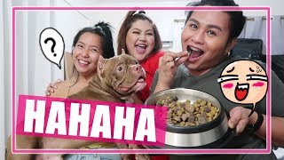 TOO MUCH FUN!* (Aug. 19, 2019) - saytioco