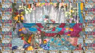 vyash puja of krishna das babaji maharaj