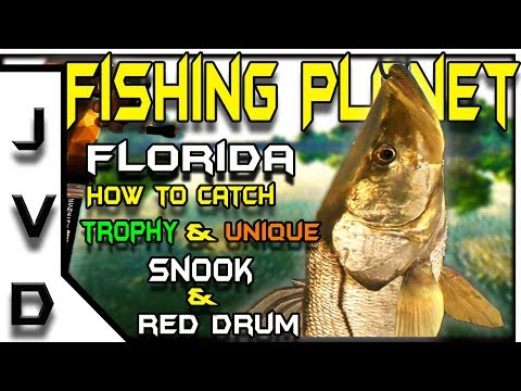 Fishing Planet Gameplay | Ep 22 | Catch Red Drum and Trophy & Unique Snook | Everglades, Florida
