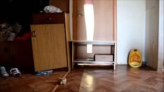 Что делает моя собака пока меня нет дома(Он прекрасно знает, что ему строго настрого запрещено заходить на кухню, но все равно пока он дома один,откр..., 2014-06-27T22:24:49.000Z)