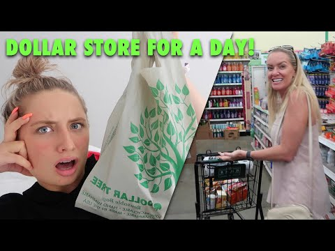 ONLY eating from the DOLLAR STORE for a day!! 😐😅