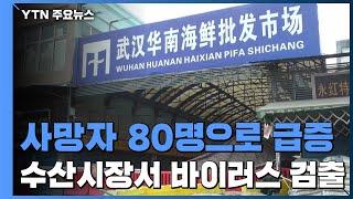 사망자 80명으로 급증...'화난 시장'에서 바이러스 검출 / YTN