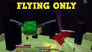 Can You Kill The Ender Dragon Without Touching The Ground???