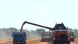 Современные отечественные комбайны   курским аграриям(, 2016-07-15T06:50:47.000Z)