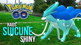 RAIDS SUICUNE SHINY✨ avec 100 ABONNÉS ! ~ Pokémon GO