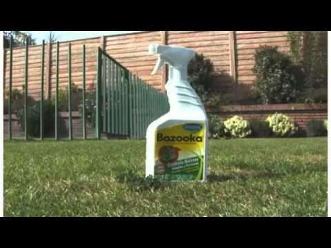 Cuidados del cesped anasac jard n youtube for Cuidados del jardin