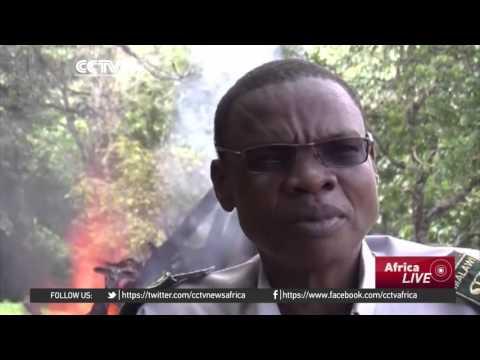 Malawi sets 2.6 tonnes of elephant tusks ablaze