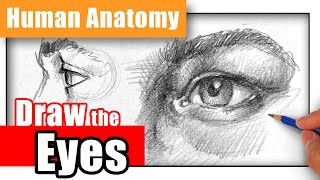 How to Draw the Eye - Different Angles