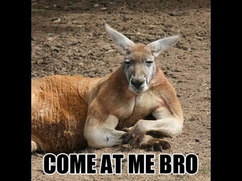 fuck-australians-sexy-chicks-with-dreadlocks-nude