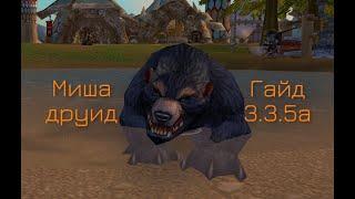 Пве гайд медведь 3.3.5а