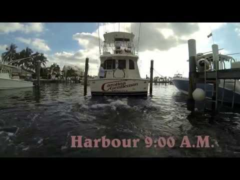 abaco marlin fishing