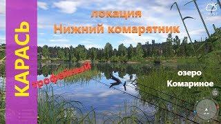 Російська рибалка 4 - озеро Комариное - Трофейний карась на виповзка