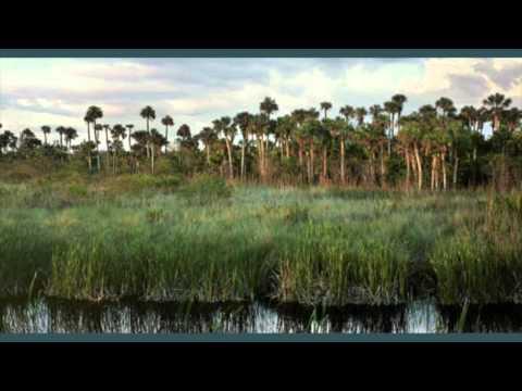 Seminole Tribe Documentary 9AAFA1E7 BCAE 45D6 B51E 3C47525C9BC8