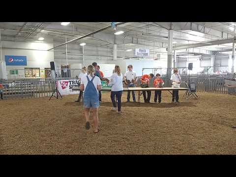 2018 Lancaster County Super Fair - 4-H Poultry Show