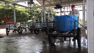 Close Up  A first hand look at industrial fish farming in Vietnam1