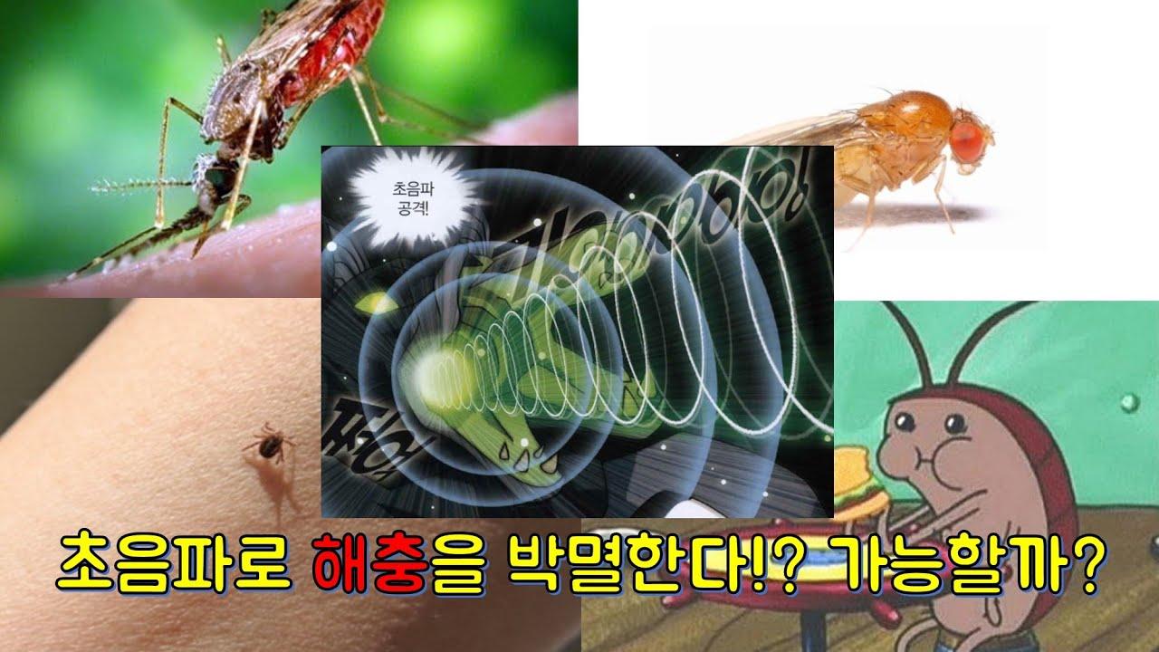 해충 퇴치의 신기술?! 흠...글쎄...? 초음파퇴치기 관련 논문을 읽어 보자!!