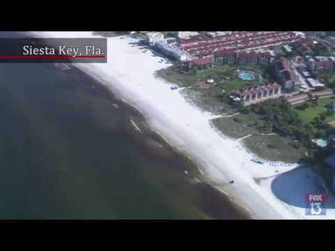 is the red tide still in siesta key florida