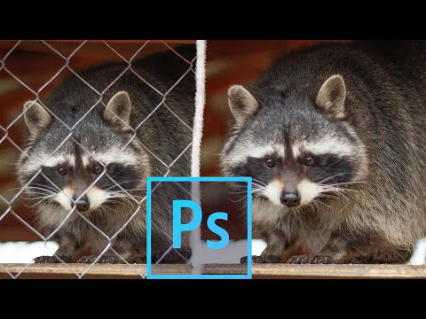 Как убрать решетку, забор и разные ЛИШНИЕ ОБЪЕКТЫ из фотографии в фотошопе!