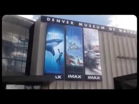 Visit the Denver Museum of Nature & Science
