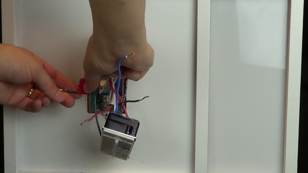 wiring a grafik t control 1 black 1 red 1 blue 1 white wire multi location companion controls  [ 1280 x 720 Pixel ]
