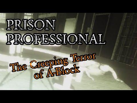 The Creeping Terror of A-Block (Phasmophobia) |