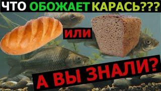 Насадка на КАРАСЯ Батон или Хлеб ОБОЖАЕТ КАРАСЬ Рыбалка
