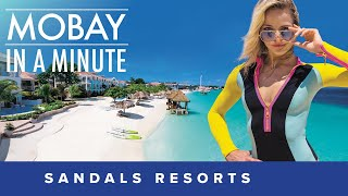 Sandals Montego Bay in a Minute
