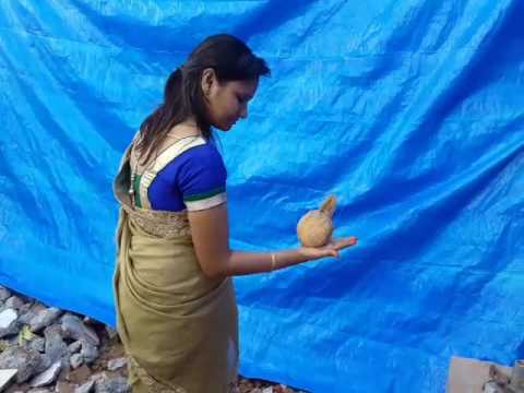 Coconut test for bore well