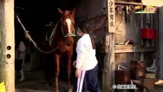 部活・佐賀農高馬術愛好会(佐賀新聞テレビ夕刊2016年3月25日)