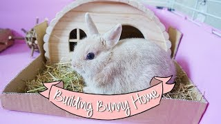 Temporarily Bunny Home Ideas - Arranging Bunny Home - First Week Home