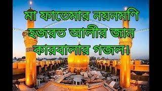 Video মা ফাতেমার নয়নমণি হজরত আলীর জান    কারবলার গজল   Ma fatemar noyonmoni hozorot Alir jaan   MNH TV    download MP3, 3GP, MP4, WEBM, AVI, FLV November 2018