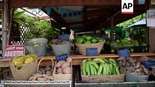 Puerto Rico finds growth in agriculture
