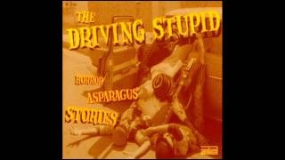 The Driving Stupid - We
