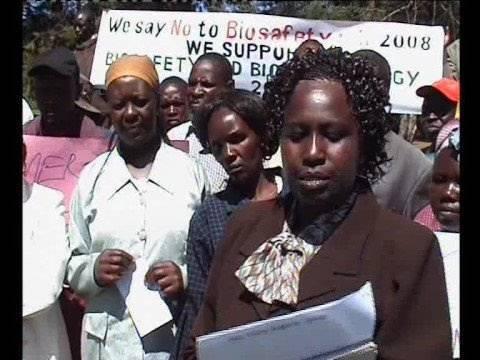GMO's In Kenya