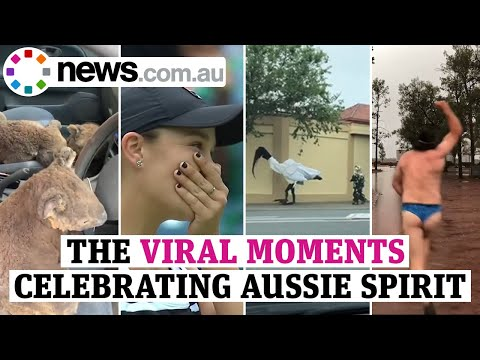 Australia Day: The Viral Moments That Celebrate Our Aussie Spirit