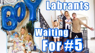 LABRANTs WAITING FOR BABY BOY | FAMILY TIKTOK of JUNE 2020