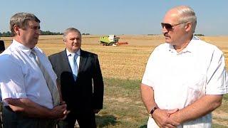 Лукашенко о прозрачности формирования цены при закупках продукции для нужд сельского хозяйства(, 2014-07-29T11:02:57.000Z)